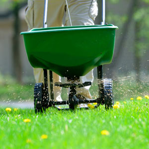 Lawn Fertilizing Lawn Care