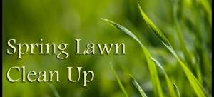 """Spring """"Clean Up"""" Services – Vision Landscape – Design & Build"""