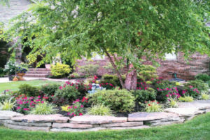 Landscapers Springfield MO